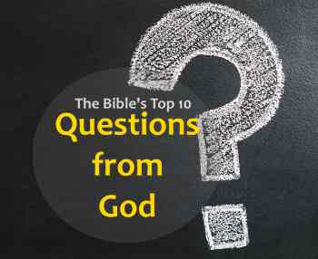 Top 10 - Best questions that God asks in the Bible